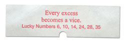Every excess becomes a vice.